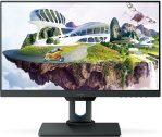 LED BenQ Monitor Type PD2500Q